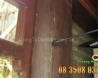 Xử lý phun thuốc diệt mối tại cột gỗ nhà