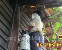 Nhân viên Phượng Hoàng xử lý phun thuốc diệt mối tại nhà