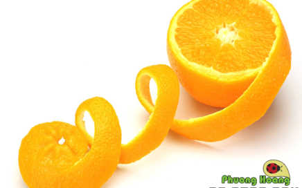Ngừa kiến bằng vỏ cam