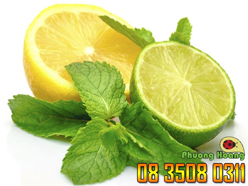 Chanh có tác giảm ngứa và kháng khuẩn, rất có hiệu quả trong trường hợp bị côn trùng cắn..