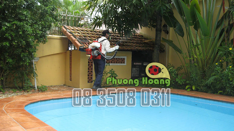 phun-thuoc-diet-muoi-o-phuong-hoang