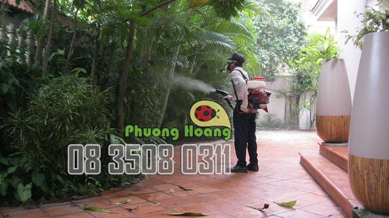 Nhân viên Phượng Hoàng phun thuốc diệt muỗi cho sân vườn.