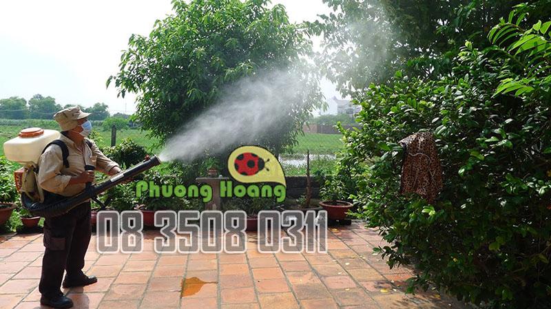 phong-ngua-moi-tan-cong-tro-lai-Phuong-Hoang-5