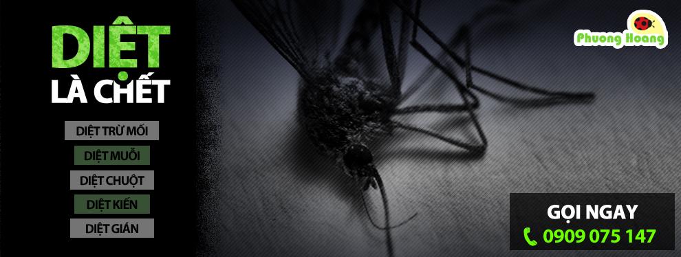 Dịch vụ diệt muỗi an toàn cho trẻ